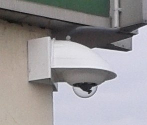 Réseau de surveillance, transmission et gestion des données